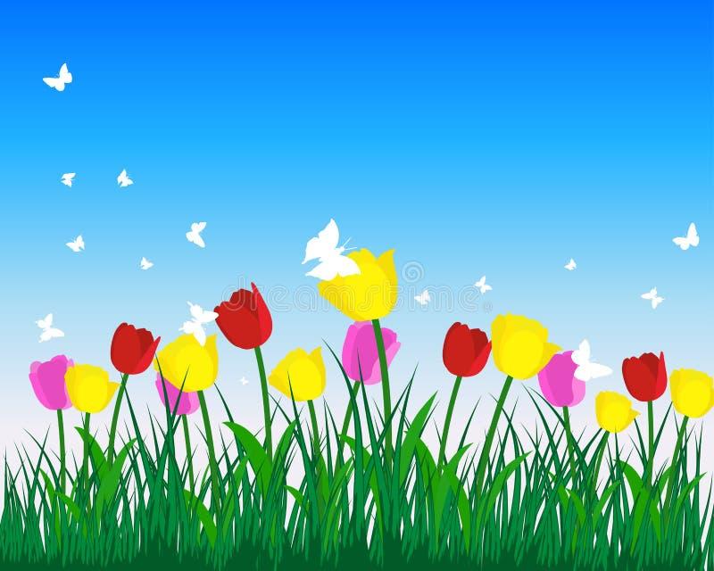 Download Tulpen vector illustratie. Afbeelding bestaande uit tulpen - 19235272