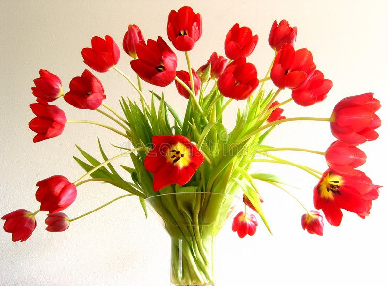 Tulpen in een vaas royalty-vrije stock foto