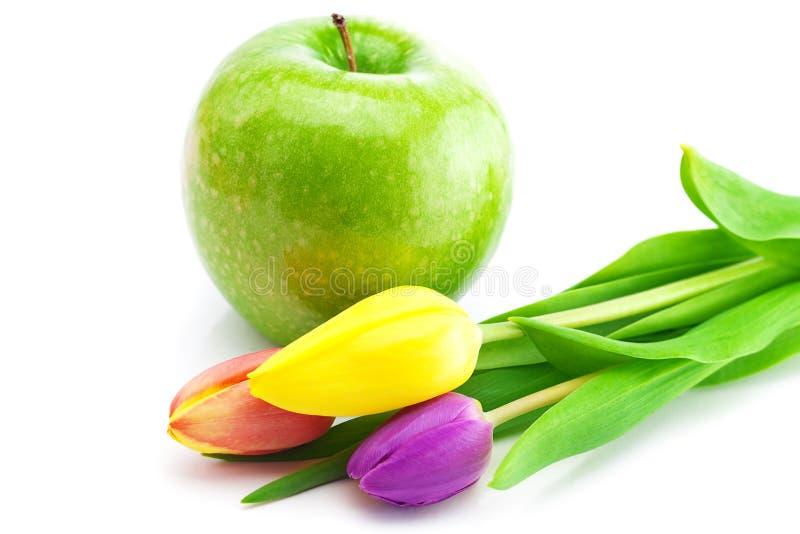 Tulpen en appel die op wit worden geïsoleerdi royalty-vrije stock fotografie