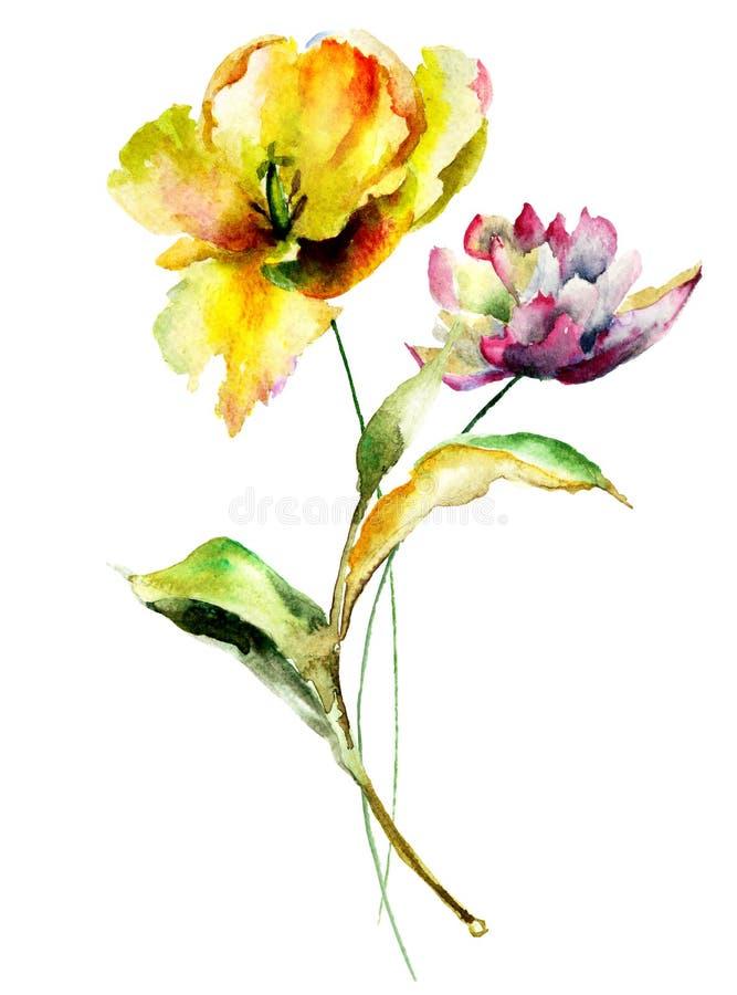 Tulpen en Pioenbloemen vector illustratie