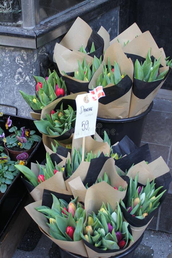 Tulpen für Verkauf lizenzfreies stockfoto