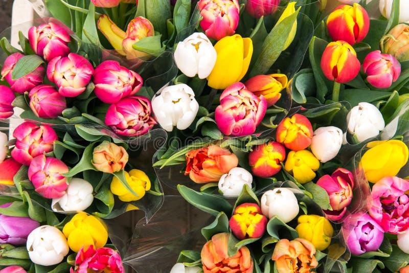 Tulpen für Verkauf an einem markt stockfoto