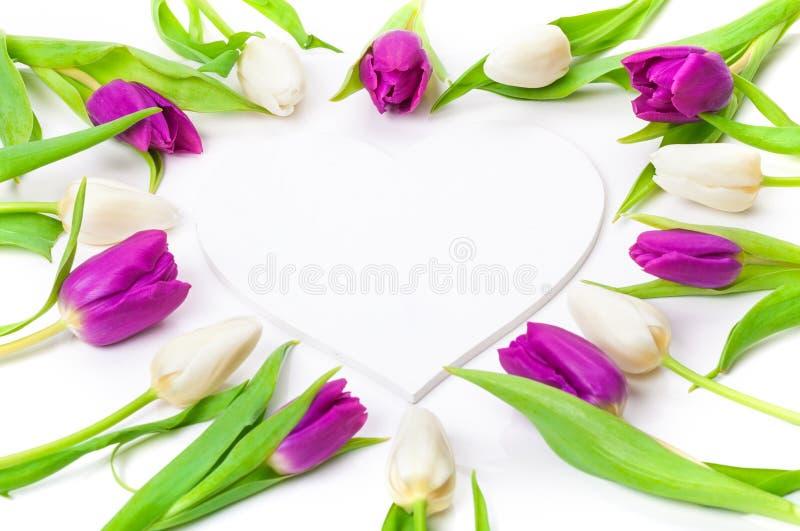Tulpen, houten hart stock foto