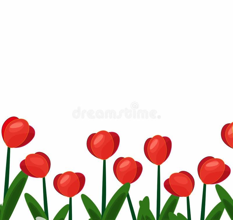 Tulpen rotes background-01 lizenzfreie abbildung