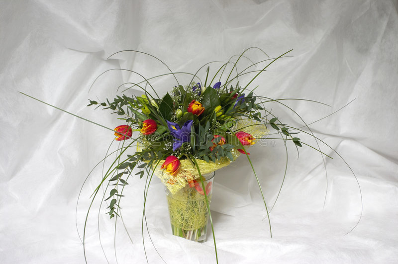 Tulpen und Blenden lizenzfreie stockfotos