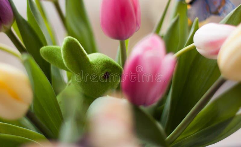 Tulpen und Kaninchen stockfotos