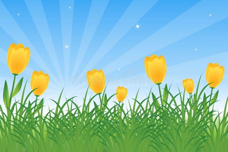 Tulpen und Löwenzahn lizenzfreie abbildung