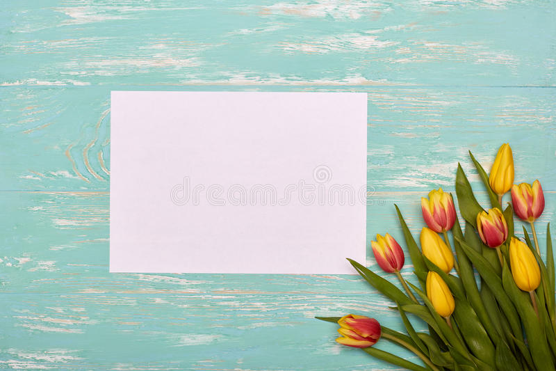 Download Tulpen und Leerbeleg stockbild. Bild von blüte, blumenstrauß - 90232115
