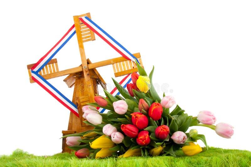 Tulpen voor een Nederlandse molen royalty-vrije stock foto's