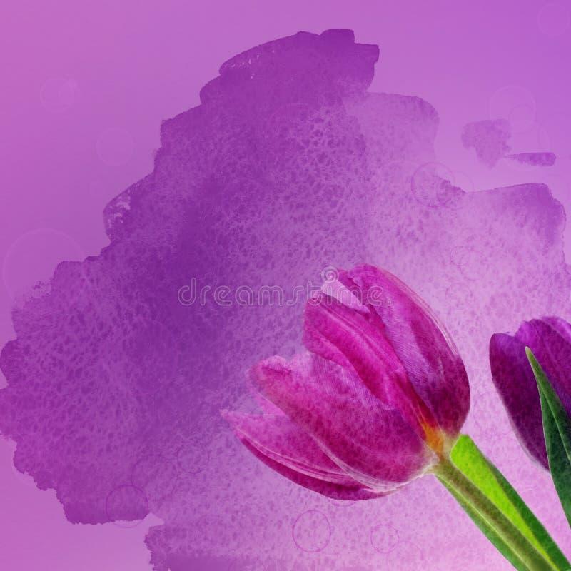 Tulpenbloemen vector illustratie