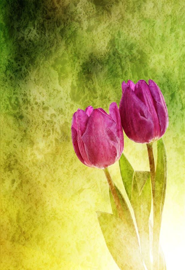 Tulpenbloemen stock illustratie