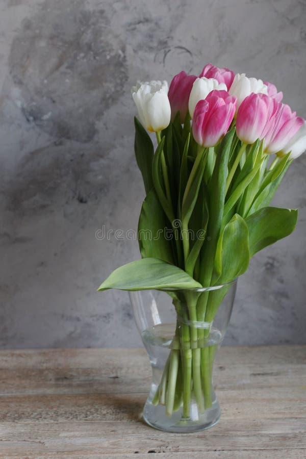 Tulpenbloemen in de lente stock foto's