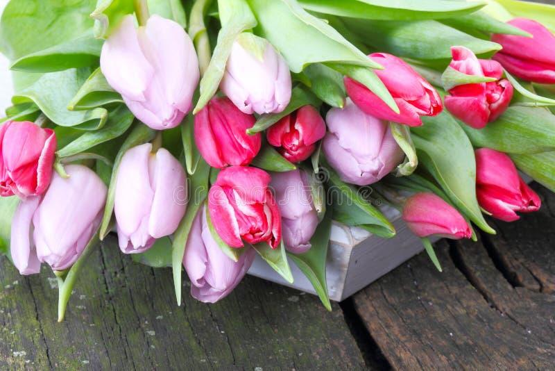 Tulpenboeket op houten dienblad stock afbeeldingen