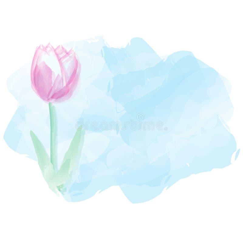 Tulpenwasserfarbhintergrund Muttertageshintergrund Vector Kranken lizenzfreie abbildung