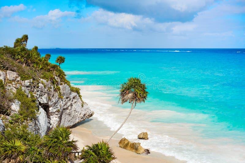 Tulum绿松石海滩在里维埃拉玛雅人的棕榈树在玛雅 库存照片