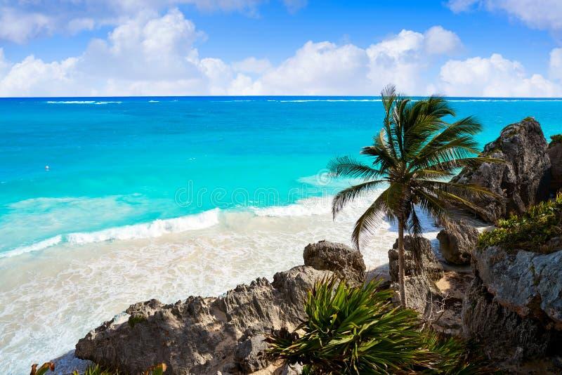Tulum绿松石海滩在里维埃拉玛雅人的棕榈树在玛雅 库存图片