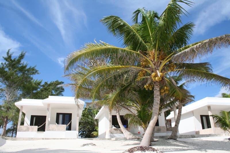 tulum курорта Мексики праздника пляжа роскошное стоковые фотографии rf