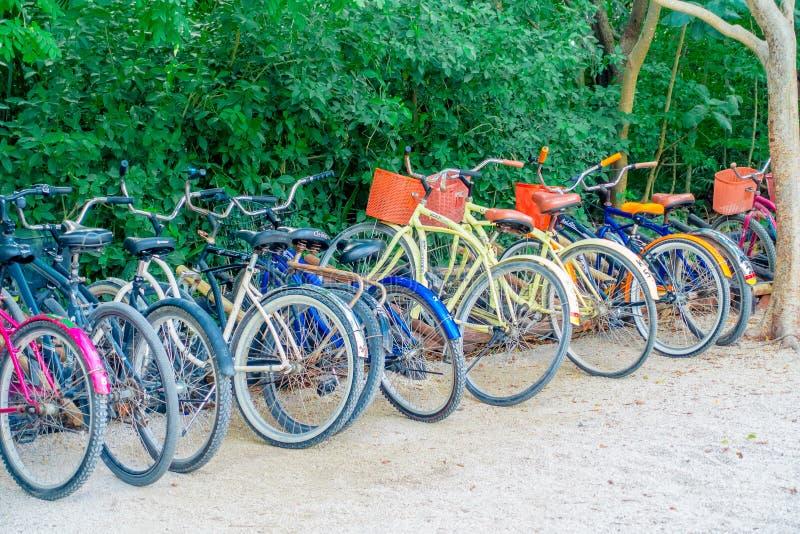 TULUM, MÉXICO - 10 DE JANEIRO DE 2018: A vista exterior de algumas bicicletas estacionou em seguido na entrada de ruínas maias de fotografia de stock royalty free
