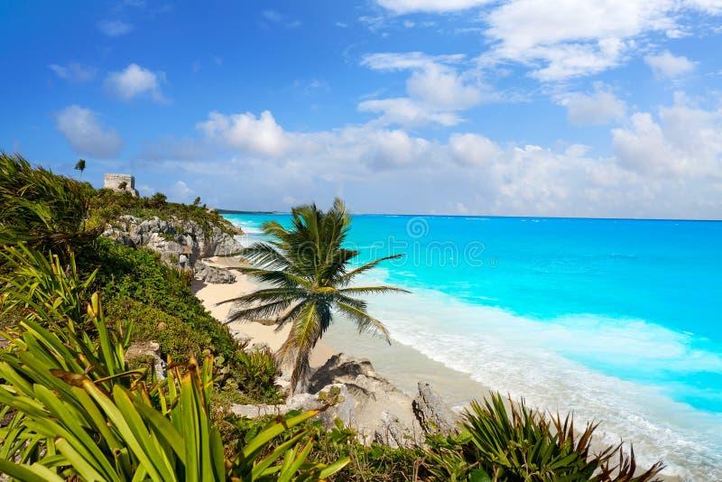 Tulum Mayan city ruins in Riviera Maya royalty free stock images