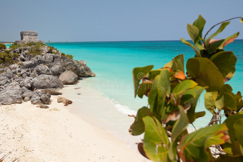 Download Tulum, Mexico stock photo. Image of beach, monte, rest - 15540118