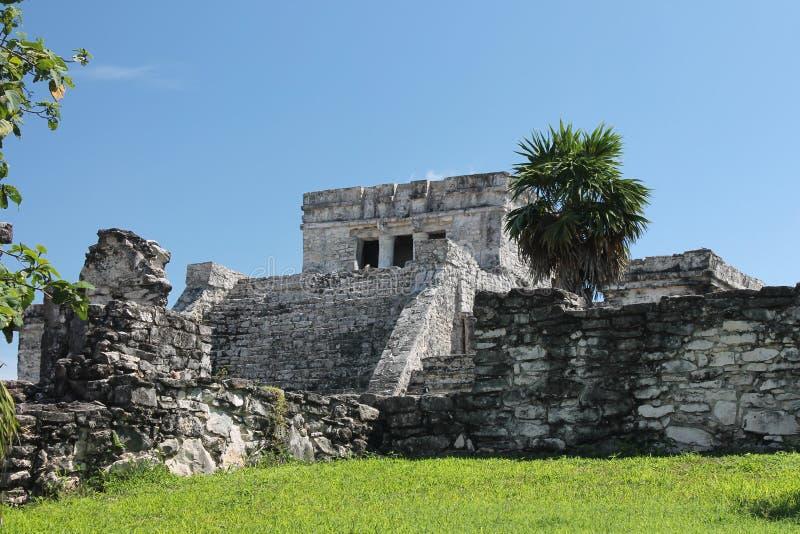 Tulum Mexico arkivfoton