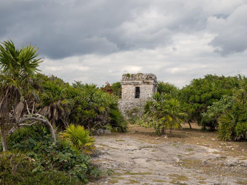 Tulum, Mexique, Amérique du Sud : [Ruines de Tulum de ville maya antique, de destination de touristes, de mer des Caraïbes, de go photographie stock