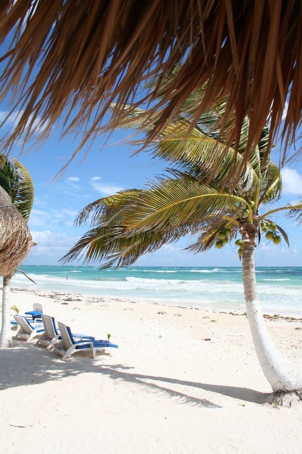 Tulum Strand im Cancun-Schacht - Mexiko lizenzfreie stockbilder