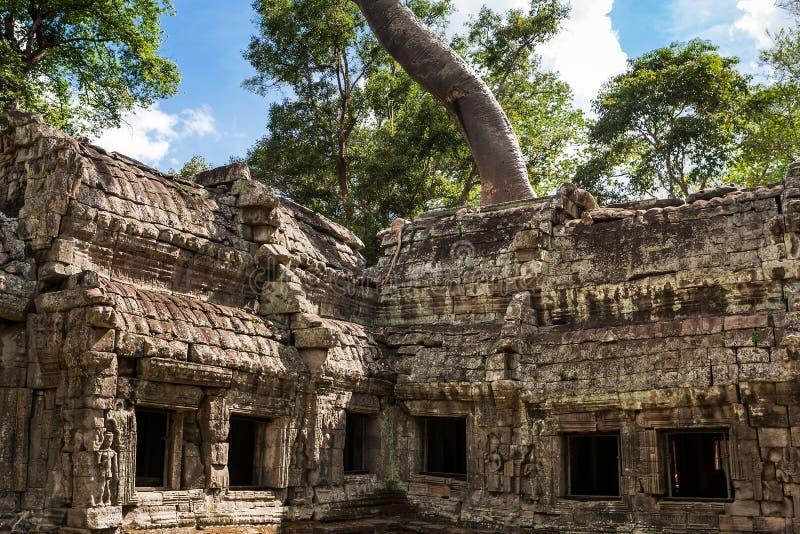 Tum Phrom a Angkor Wat, Cambogia immagine stock