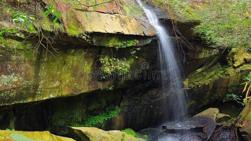 Tum Yai Waterfall royalty free stock images