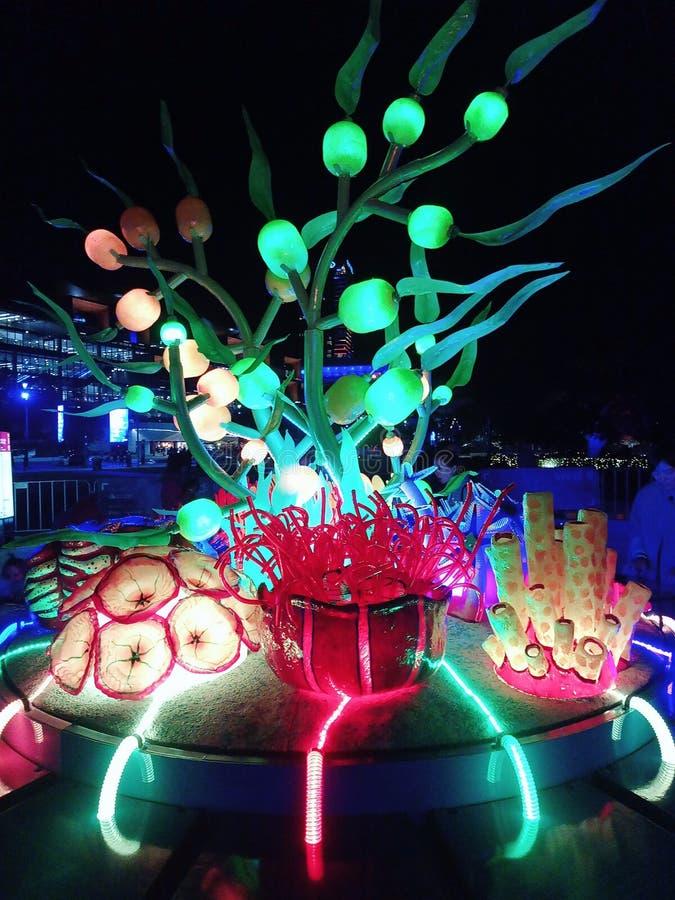 Tumbalong-Lichter lizenzfreie stockfotos
