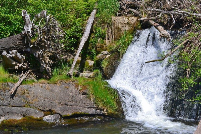 Tumwater Falls royalty free stock photography