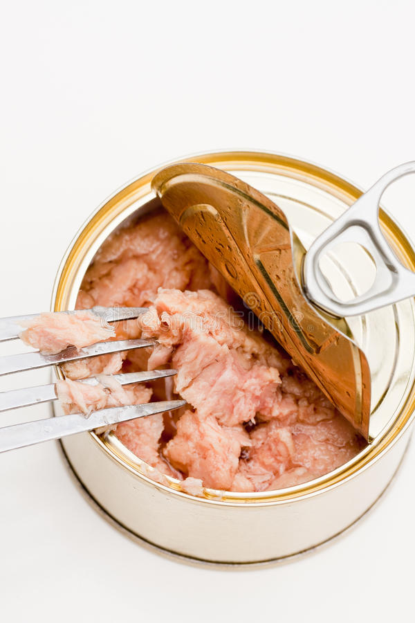 Download Tuna Royalty Free Stock Photography - Image: 25709737