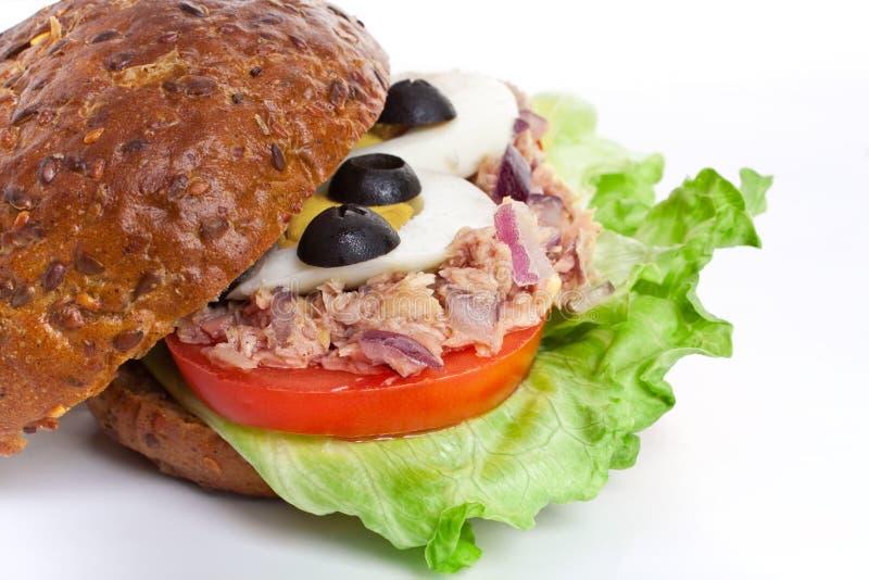 Tuna and egg whole wheat sandwich royalty free stock photos