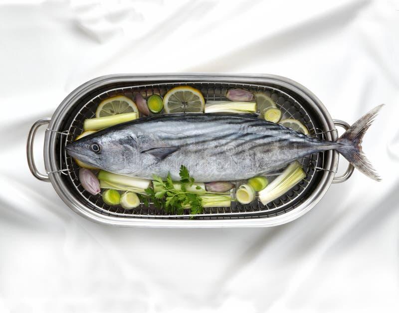 Tuna Fish immagini stock libere da diritti