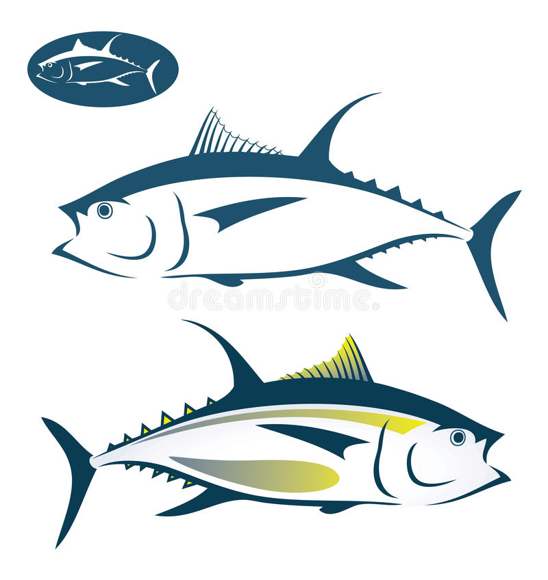 Tuna fish. Vector illustration of tuna fish