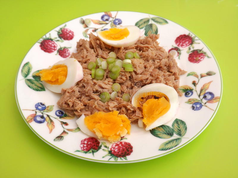Tuna fish with eggs. Some fresh tuna fish with eggs royalty free stock photos