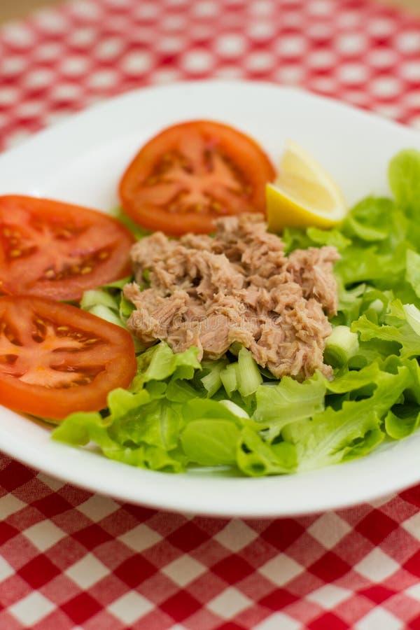 Tuna Fish Meat Over Green-Salade stock afbeeldingen