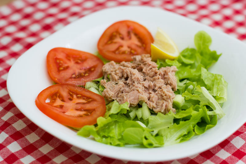 Tuna Fish Meat Over Green-Salade royalty-vrije stock afbeelding