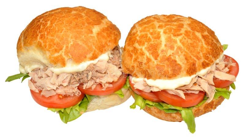 Tuna Fish Sandwich Rolls fraîche images libres de droits