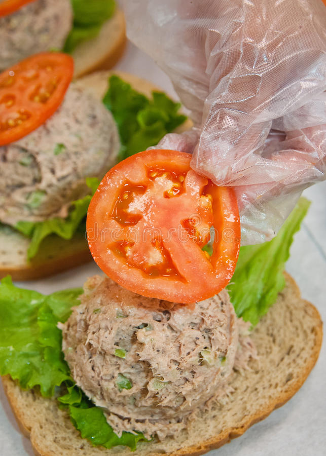 Tuna fish sandwiches royalty free stock photo