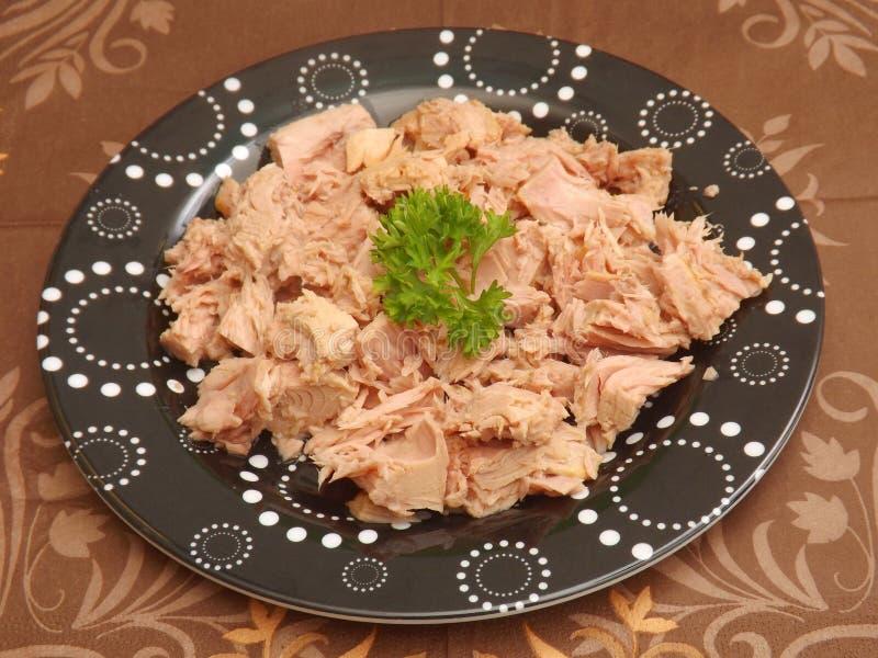 Tuna fish. A snack of tuna fish stock photography