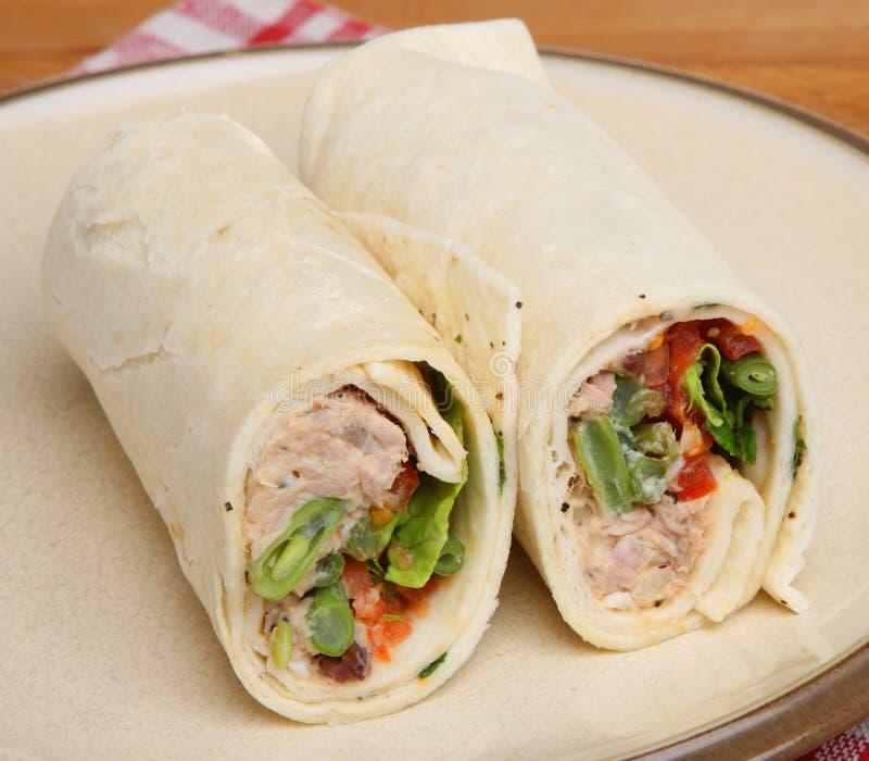 Tuna Fish Wrap Sandwich royalty free stock photos