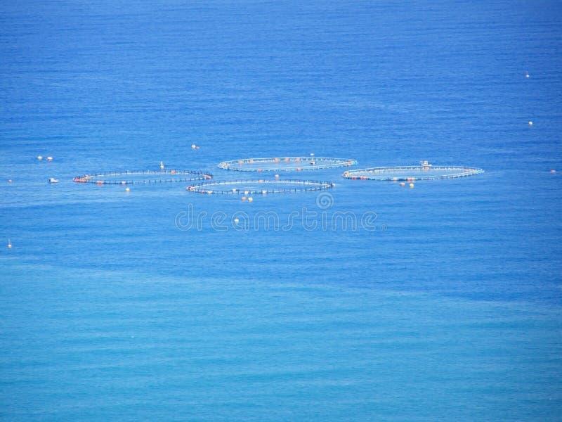 Tuna fishing, nets in sea stock images