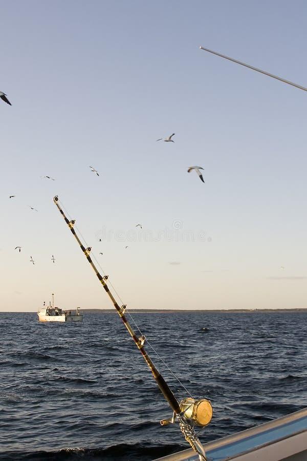 Tuna Fishing Rod Royalty Free Stock Images