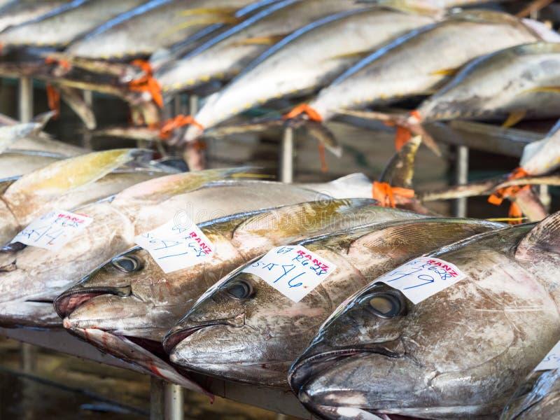 Tuna Harbor en général Santos City photographie stock libre de droits