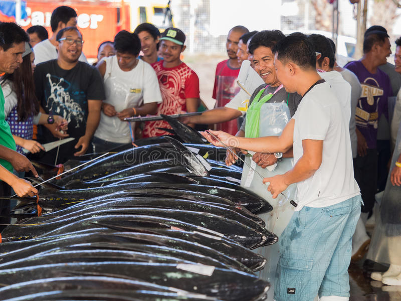The Tuna Harbor in General Santos City. General Santos City - September 1, 2016: Buyers and sellers checking the quality of yellowfin tuna at the Tuna Harbor in royalty free stock photography