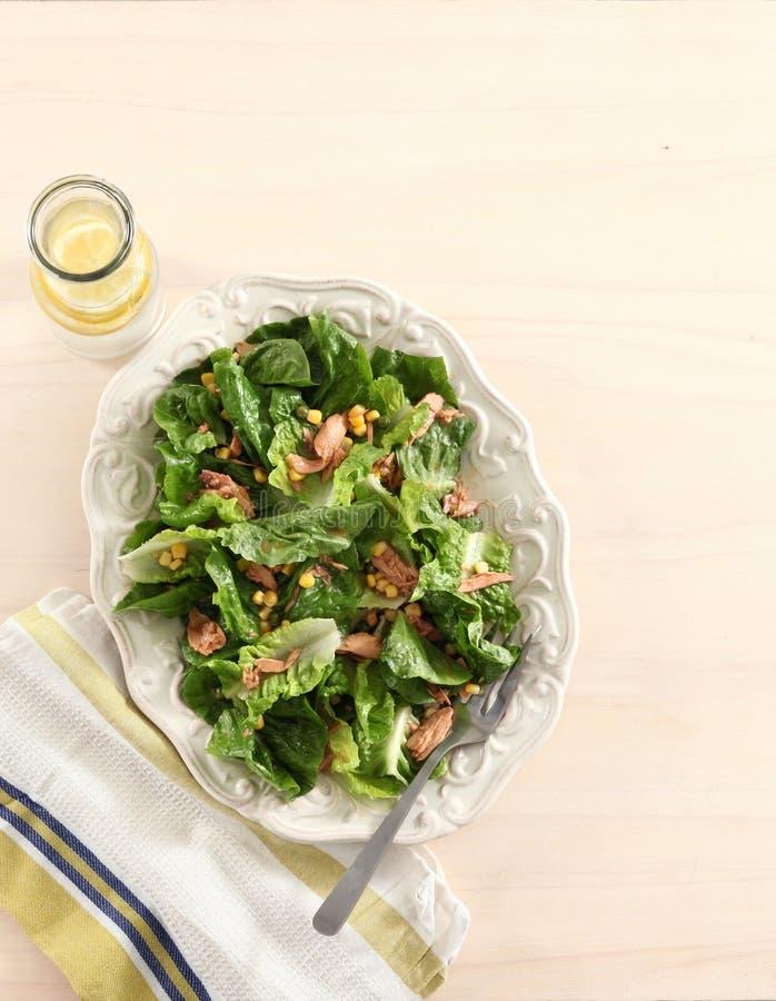 Tuna lettuce sakad. Tuna lettuce salad on wood background stock images