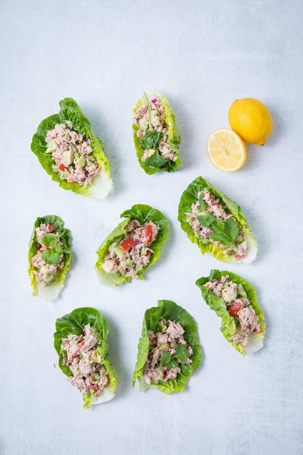 Tuna Lettuce Wraps foto de archivo libre de regalías