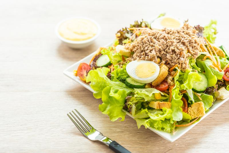 Tuna meat and eggs with fresh vegetable salad stock photography