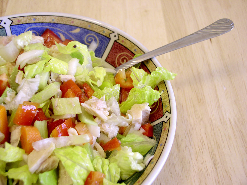 Tuna Salad 2 royalty free stock images